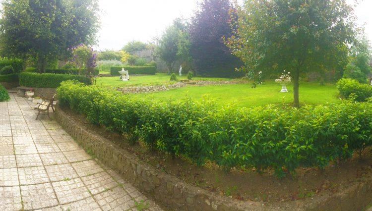 palm rise rear garden 2