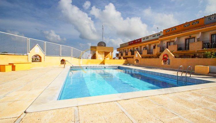 pool area playa flamenca